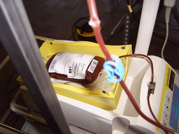 O Ministério Público quer que o fornecimento de bolsas de sangue seja interrompido. (Foto: Reprodução/Wikimedia)