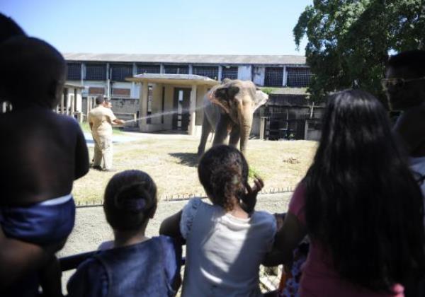 Zoológico do Rio (Foto Agencia Brasil)