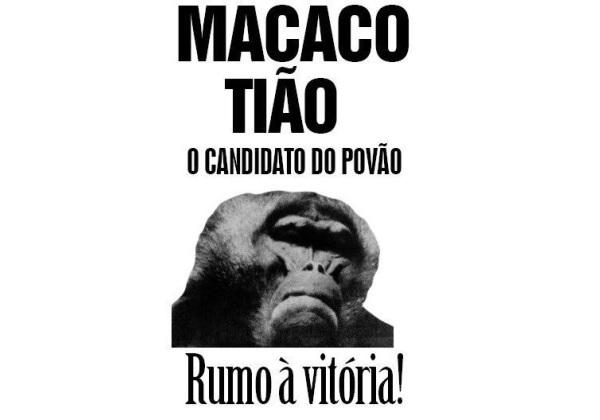 macaco tiao