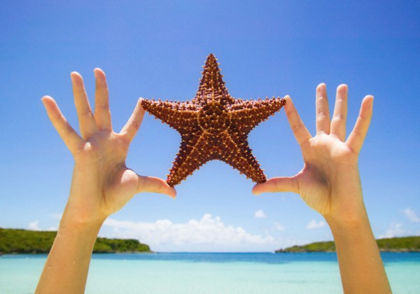 Hands Holding Starfish at Beach --- Image by © Robert Llewellyn/CORBIS