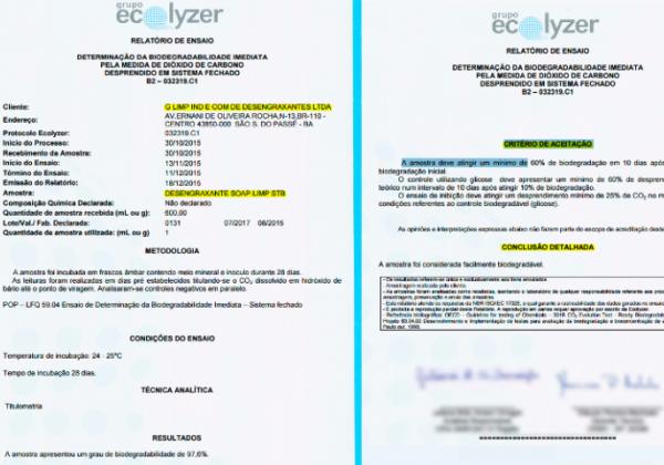 Foto: Reprodução/Ecolyzer