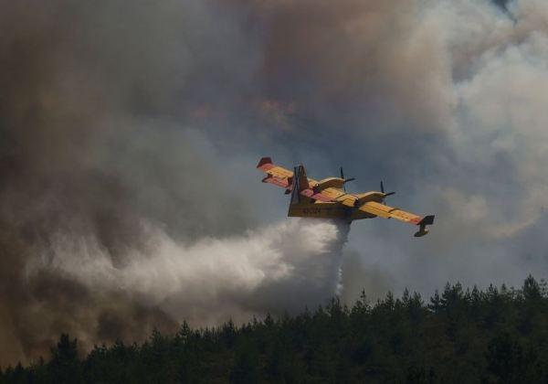 Avião Canadair que combatia incêndios em Portugal cai no centro do país