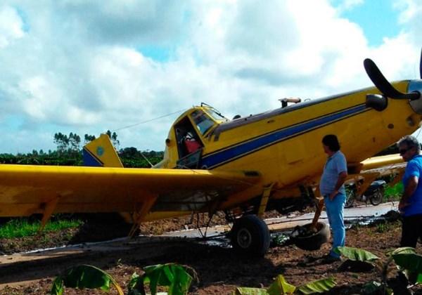 Foto: Site Bahia Dia a Dia