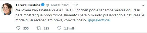 tereza cristina foto twitter