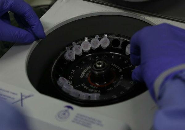 Diagnóstico laboratorial de casos suspeitos do novo coronavírus (Foto: Josué Damacena/Fiocruz)