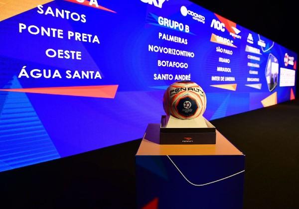 Foto: Alexandre Battibugli/divulgação FPF