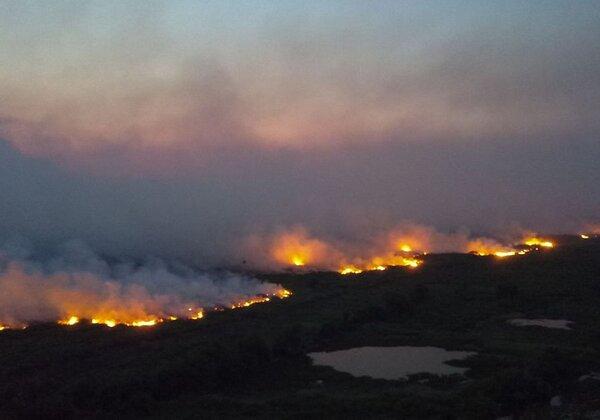 Incêndios florestais entre Miranda e Corumbá (Foto: Chico Ribeiro/Governo do Mato Grosso