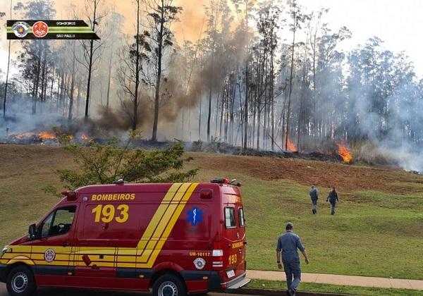 Foto: Corpo de Bombeiros de SP